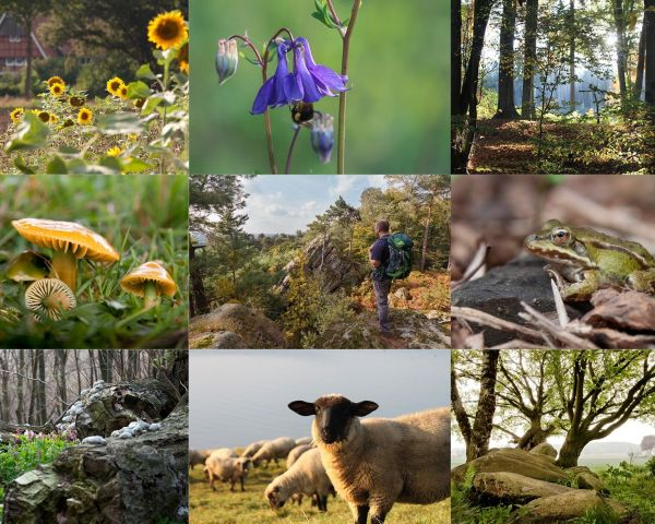 Naturpark Terra Vita Fotowettbewerb So Schon Ist Unsere Heimat